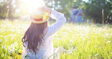 sunce-prolece-livada-trava